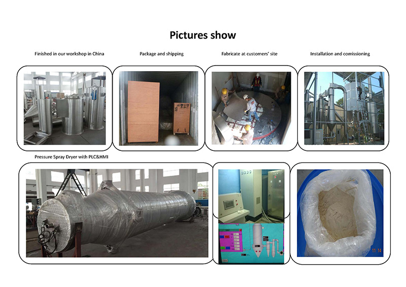 ZPG Spray Dryer For Chinese Traditional Medicine